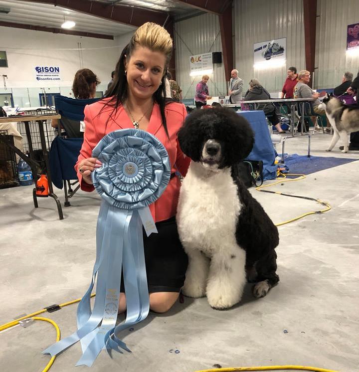 Jude Best Puppy In Show